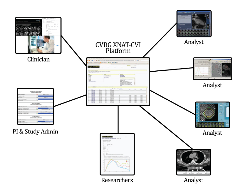XNAT-CVI user workflow diagram
